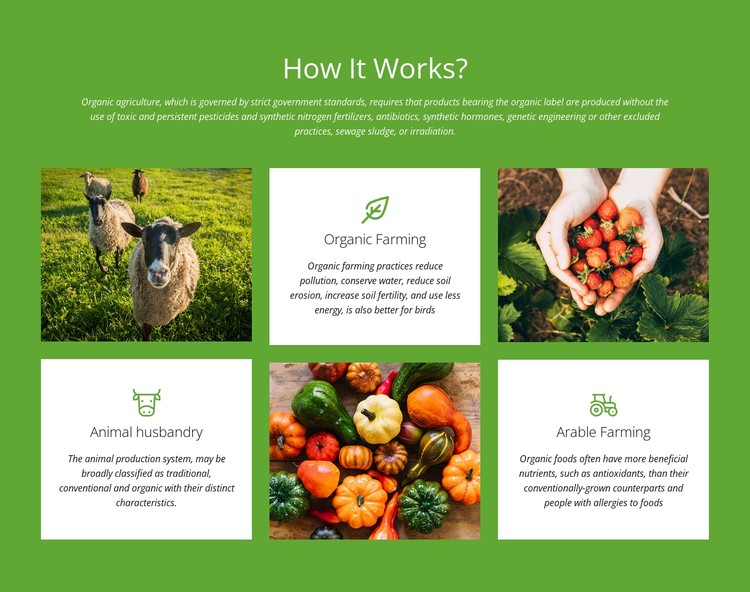 How does a farm work? CSS Template