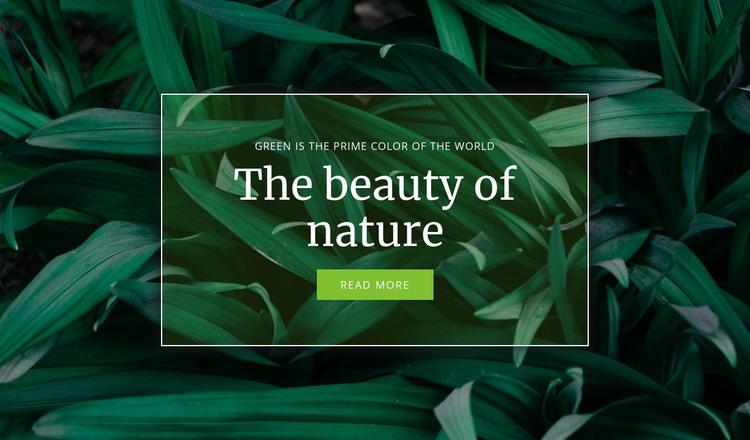 Secret of nature HTML Template