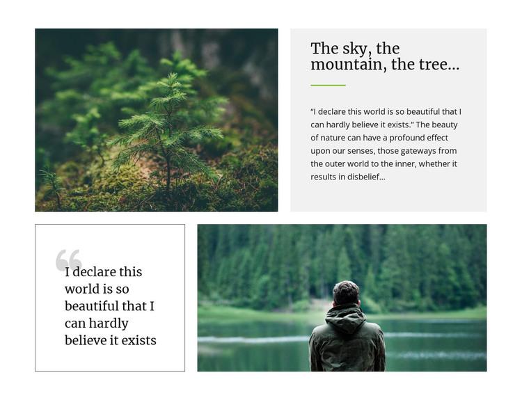 Sky mountain and  tree HTML Template