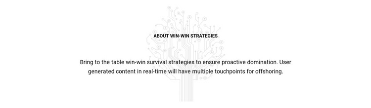 About Win Strategies Static Site Generator