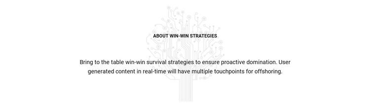 About Win Strategies Website Builder Software