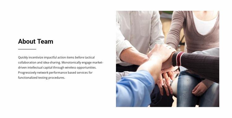 About Team WordPress Website Builder