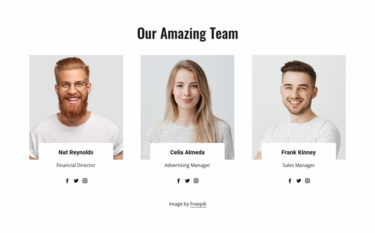 Our amazing team Website Template