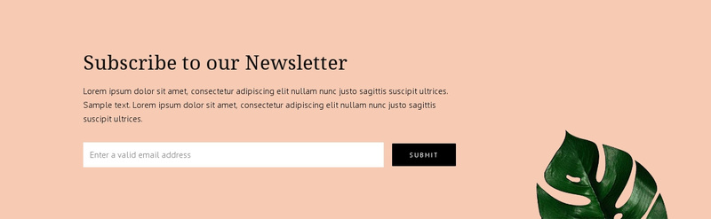Newsletter subscription Website Maker