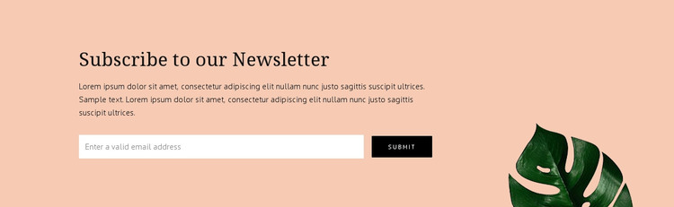 Newsletter subscription Woocommerce Theme
