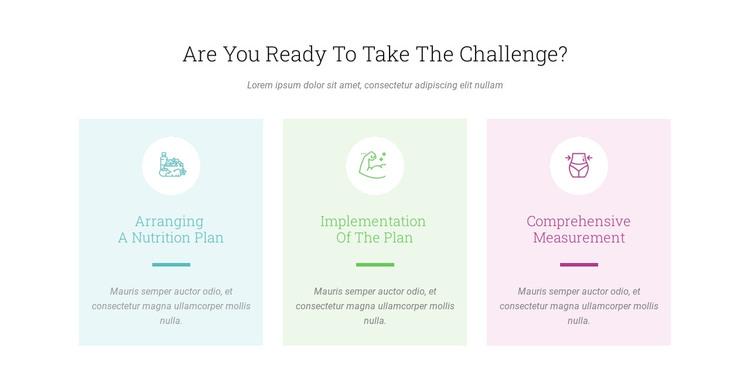 Features Ready Challenge WordPress Theme