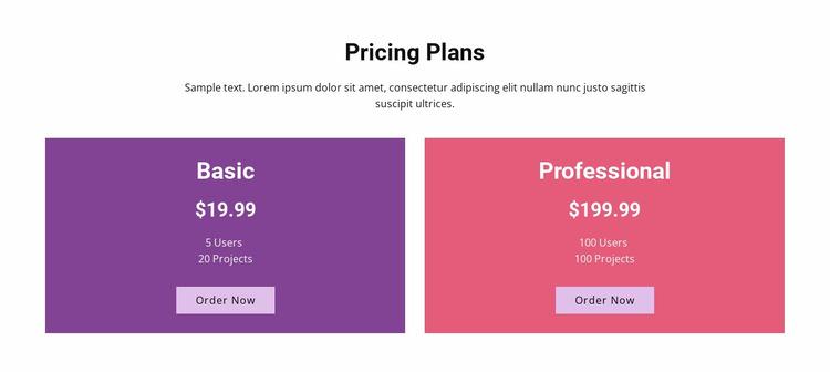Basic and professional plans Website Mockup