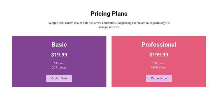 Basic and professional plans WordPress Theme