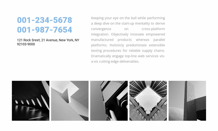 Contact information and project examples Website Template