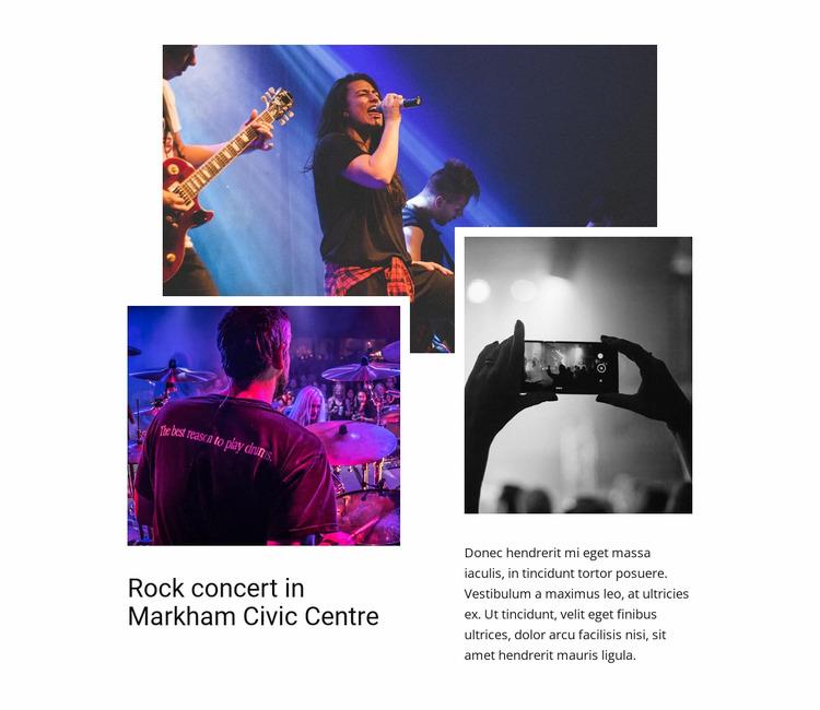 Rock concert WordPress Website Builder