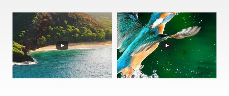 Nature water sea Html Website Builder