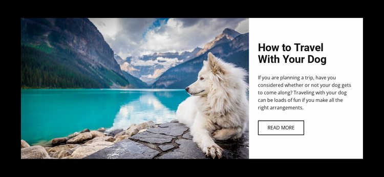 Travel with your dog Website Template