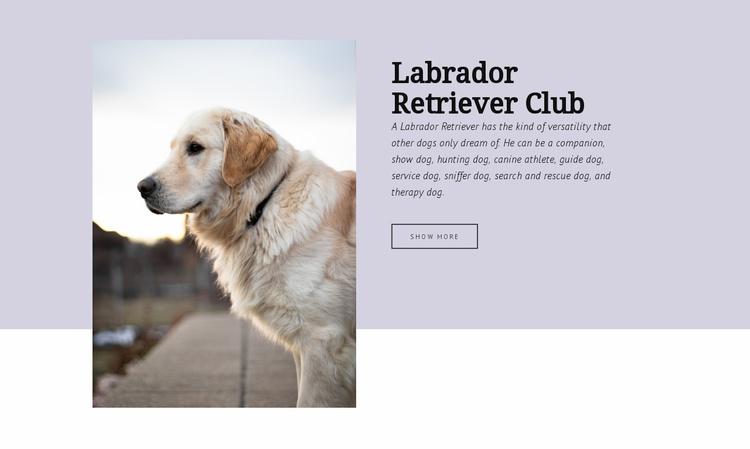 Labrador retriever club Website Template