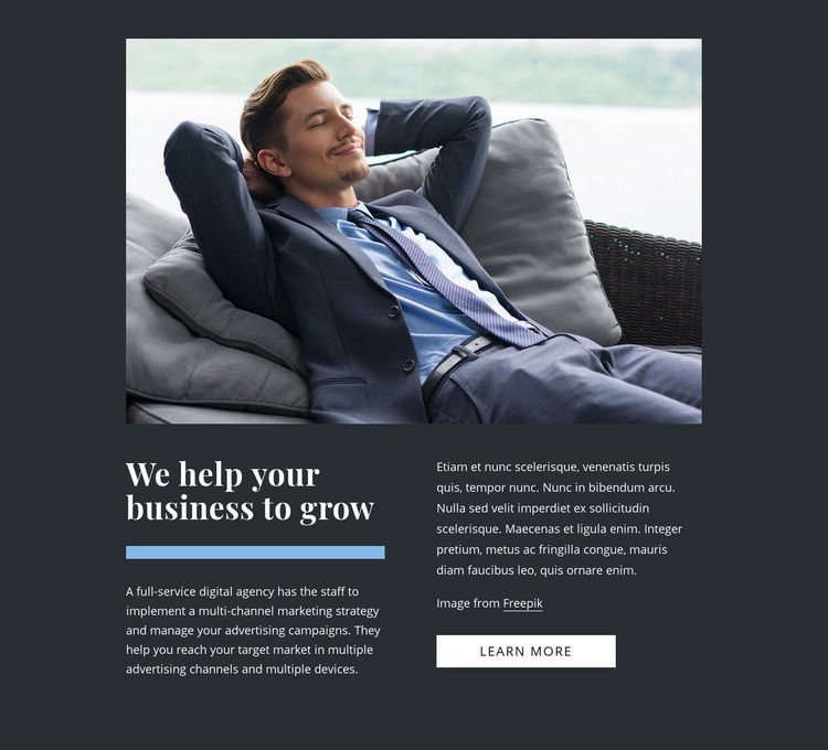 We grow businesses Web Page Designer