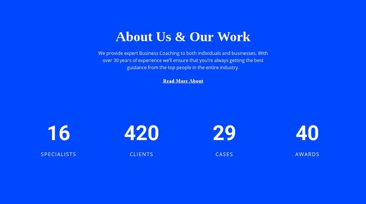 Counter About Us WordPress Website