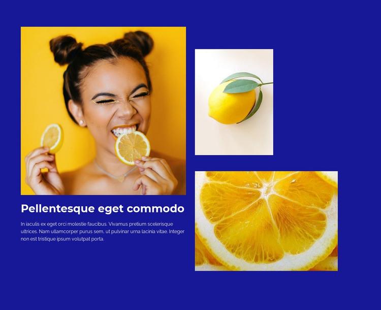 Lemons provide vitamin C HTML Template