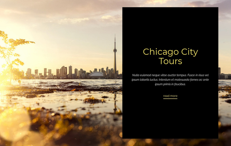 Chicago City Tours Landing Page