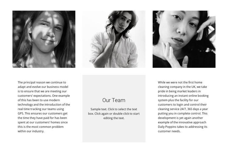 Team of three Web Page Designer