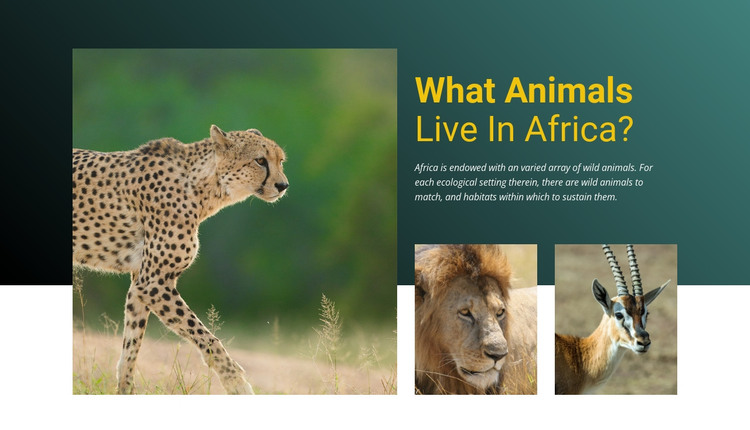 Live in africa HTML Template