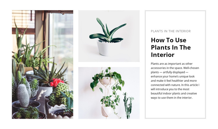 Plants interior HTML5 Template