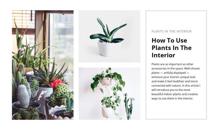 Plants interior Wysiwyg Editor Html