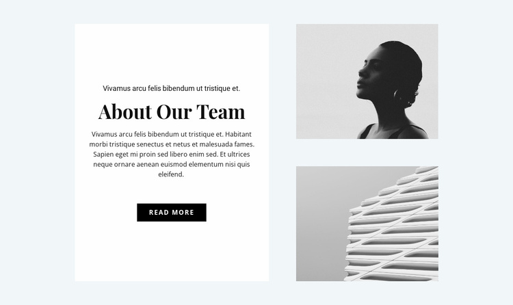 About the design team Website Template