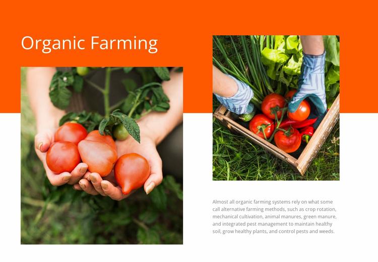 Organic Farming Website Template