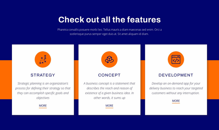 Check out all the features Website Template