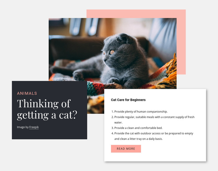 General cat care HTML Template