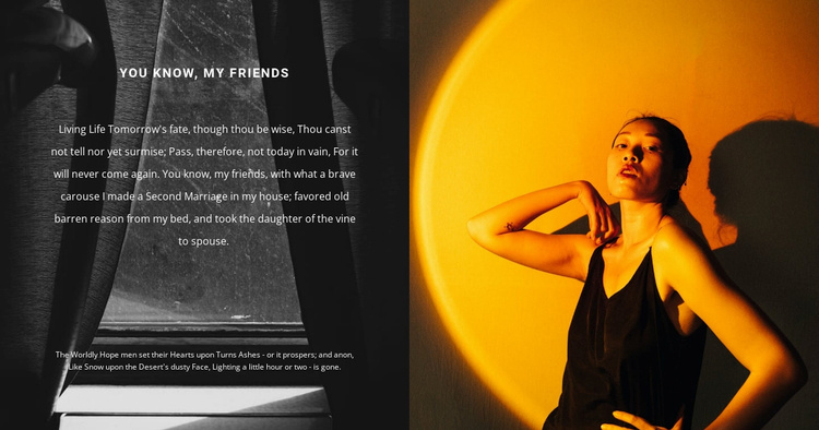 Fashion professional shooting Website Template