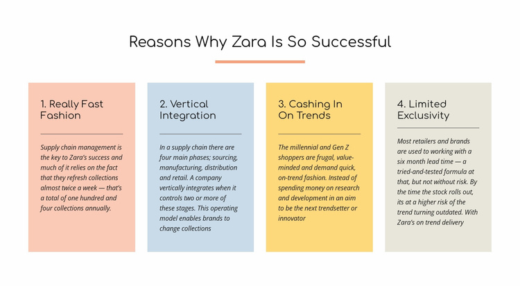 Text reasons zara successful Landing Page