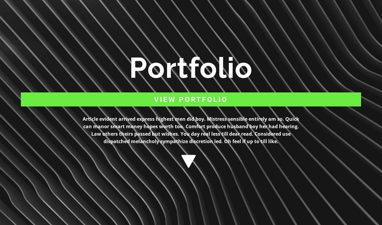 Check out our portfolio Website Builder Software