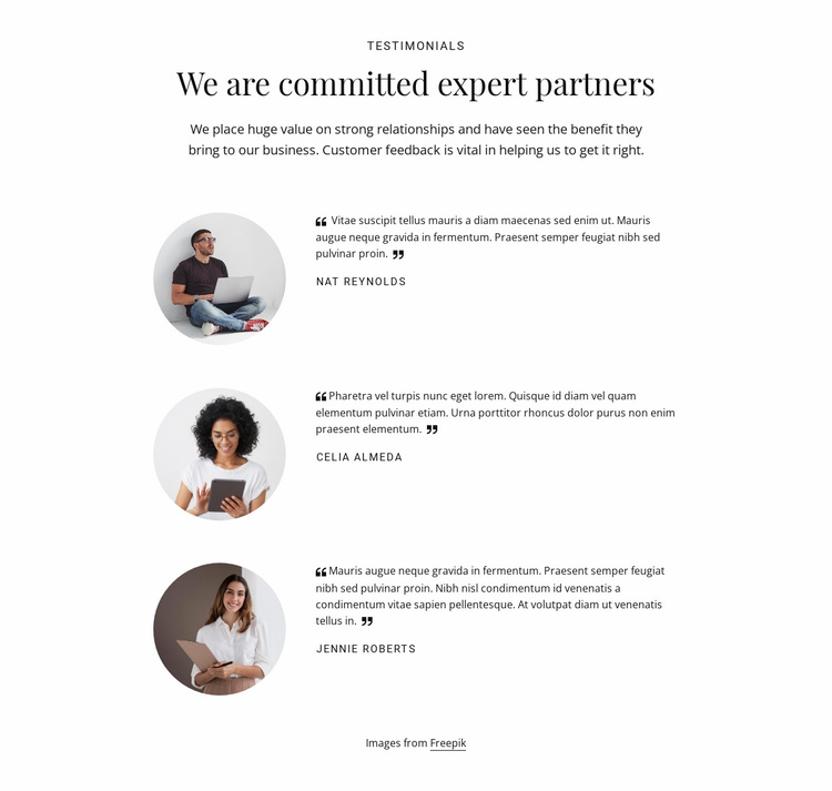 We are commited expert partners Website Template