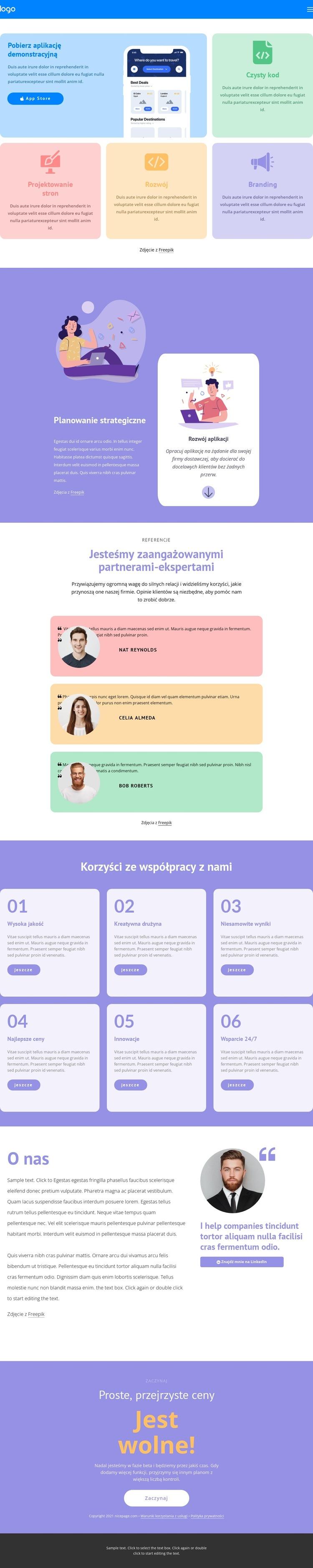 Szybki rozwój Szablon witryny sieci Web