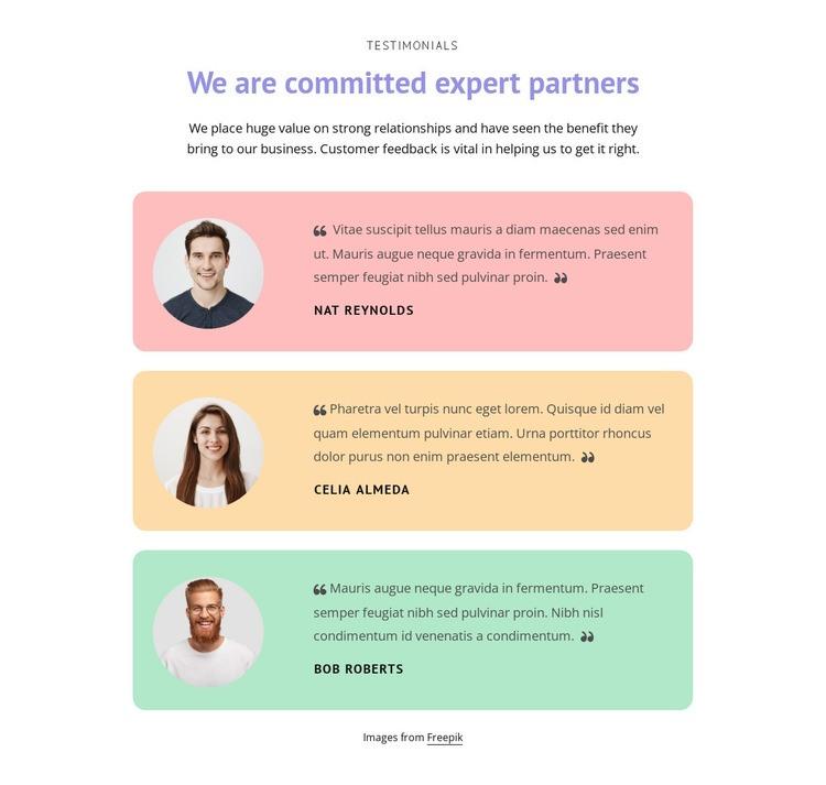 Great testimonials Web Page Designer
