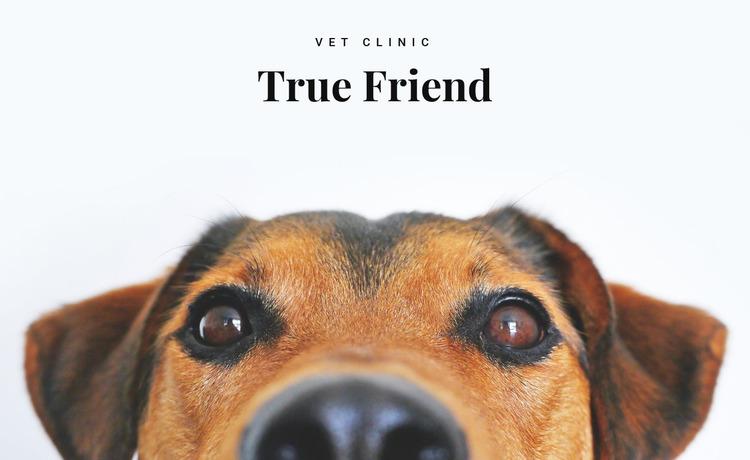 Animals vet clinic  Html Website Builder