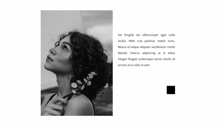 Fashion photographer's notes Website Template