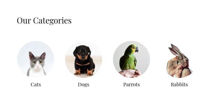 Domestic animals shop HTML5 Template