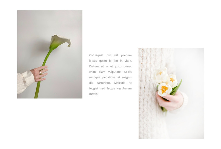 Delicate flowers HTML Template