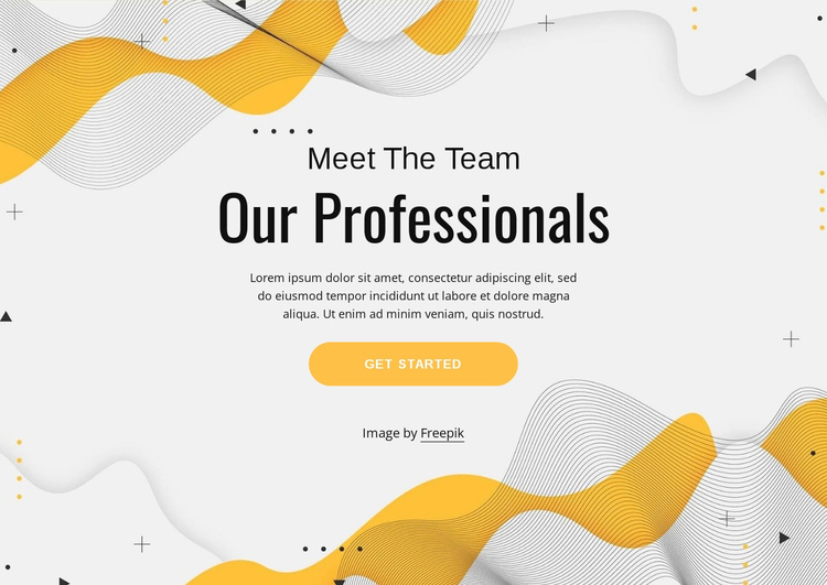 Meet our professional team One Page Template