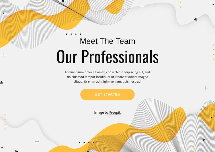 Meet our professional team Web Design