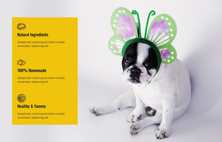Health and yummy food for pets Website Template