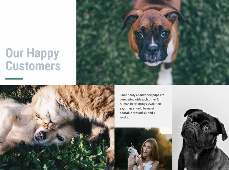Pet hospital Website Template