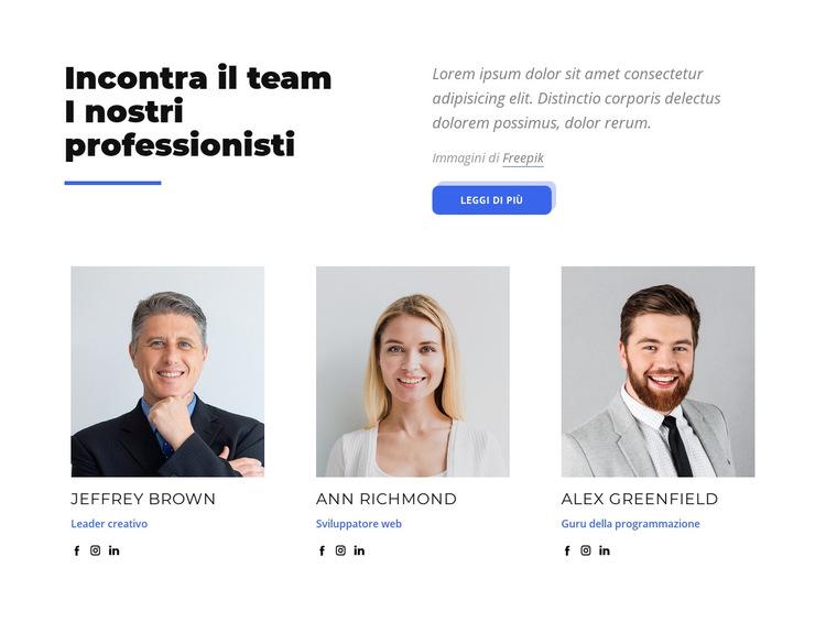 Incontra il team i nostri professionisti Modello di sito Web