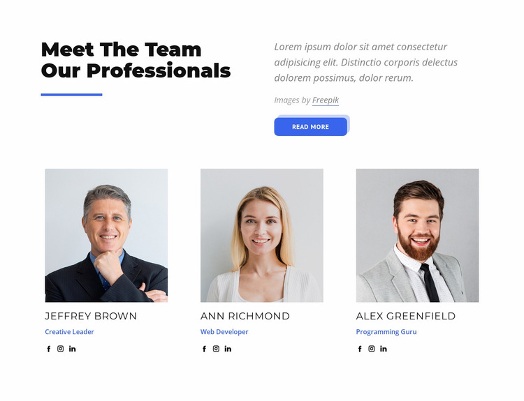 Meet the team our professionals Website Mockup