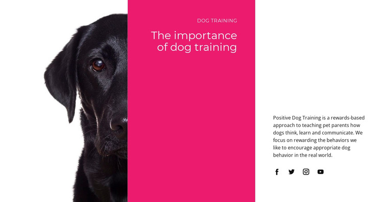 We understand how dogs think HTML Template