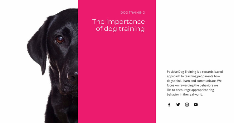 We understand how dogs think Website Template