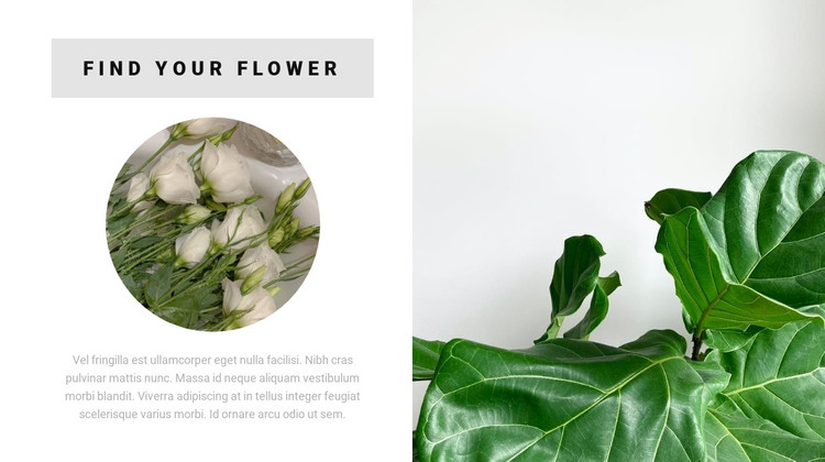 Find your flower HTML Template