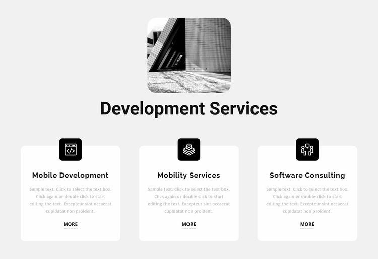 New development services Website Mockup