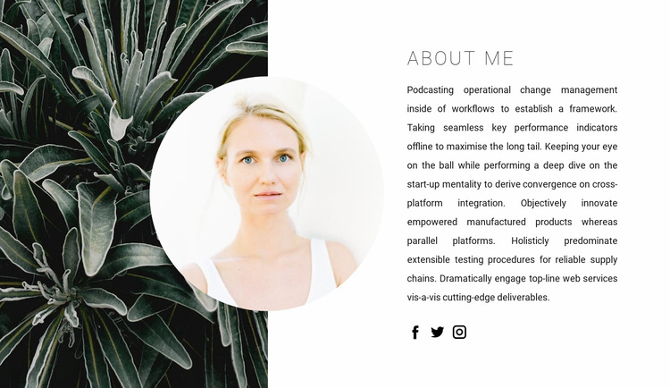 About my talents Website Template